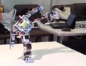 ロボットショー・堂々とした土俵入り
