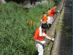 浜名湖/古見川クリーン作戦3